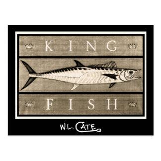 Kingfish Vintage Black & White Postcards