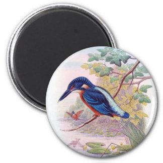 Kingfisher 6 Cm Round Magnet