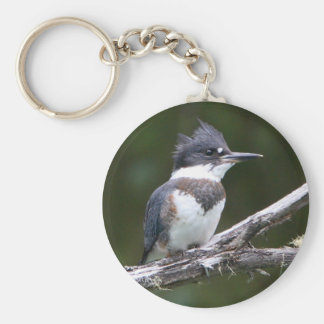 kingfisher basic round button key ring