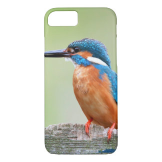Kingfisher bird iPhone 7 case
