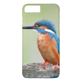 Kingfisher bird iPhone 7 plus case
