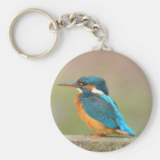 Kingfisher Bird Keychain