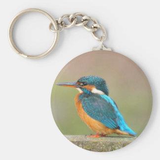 Kingfisher Bird Keychain