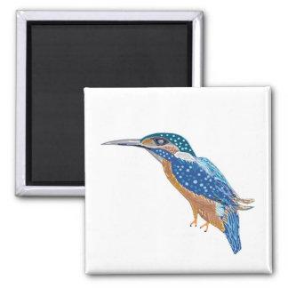 KingFisher Bird Refrigerator Magnets