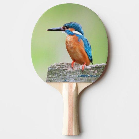 Kingfisher bird ping pong paddle