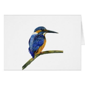 Kingfisher Bird Watercolor Halcyon Bird Card