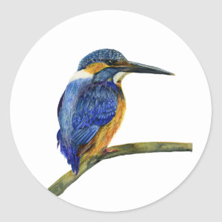 Kingfisher Bird Watercolor Halcyon Bird Round Sticker