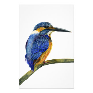Kingfisher Bird Watercolor Halcyon Bird Stationery
