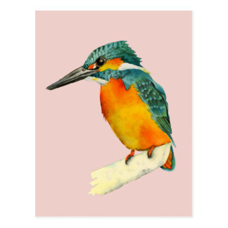 Kingfisher Bird Watercolor Painting Postcard