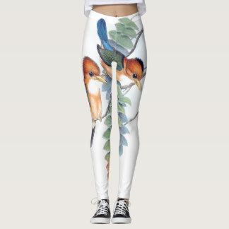 Kingfisher Birds Pond All Over Print Leggings