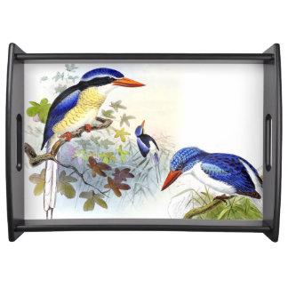 Kingfisher Birds Wildlife Animal Pond Serving Tray