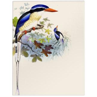 Kingfisher Birds Wildlife Animals Dry Erase Board
