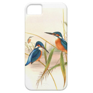 Kingfisher Birds Wildlife Animals Pond Case For The iPhone 5
