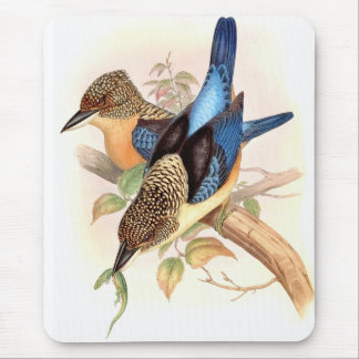 Kingfisher Birds Wildlife Animals Pond Mouse Pad