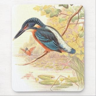 Kingfisher Birds Wildlife Animals Pond Mouse Pad