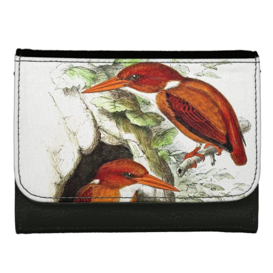Kingfisher Birds Wildlife Animals Pond Wallet