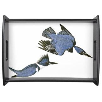 Kingfisher Birds Wildlife Audubon Serving Tray