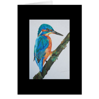Kingfisher - Black Card