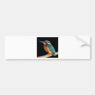 """Kingfisher"" Bumper Sticker"