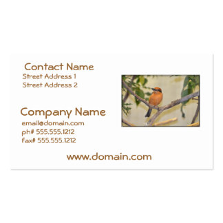 Kingfisher Business Cards