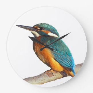 """Kingfisher"" design wall clocks"
