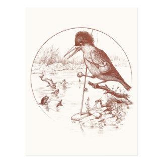 Kingfisher Fishing with Pole Postcard