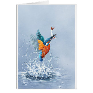 Kingfisher flying out of the water card