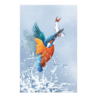 Kingfisher flying out of the water stationery