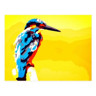 Kingfisher Fun Postcard
