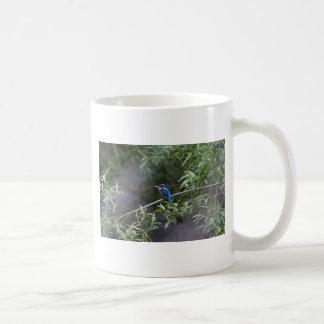 kingfisher.jpg coffee mug