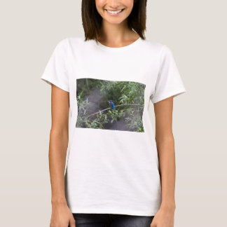 kingfisher.jpg T-Shirt
