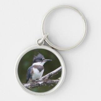 kingfisher Silver-Colored round key ring