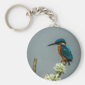 Kingfisher Keychain/Keyring Basic Round Button Key Ring