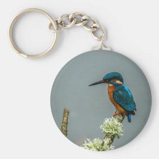 Kingfisher Keychain/Keyring Basic Round Button Key Ring