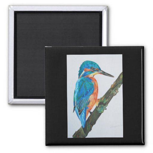 Kingfisher Magnet