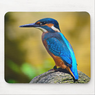 Kingfisher Mouse Mat