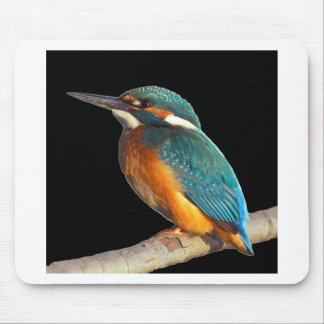 """Kingfisher"" Mouse Pad"