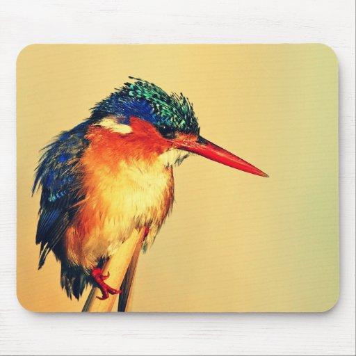 Kingfisher Mousepad