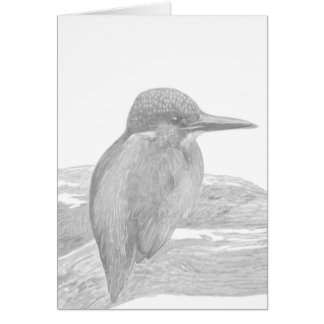 Kingfisher Pencil Drawing. Card