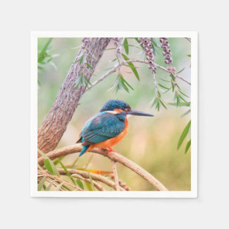 Kingfisher Perched on Branch Disposable Serviettes