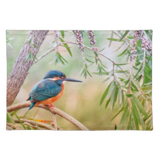 Kingfisher Perched on Branch Placemat