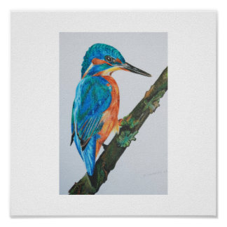 Kingfisher Print - choose your paper and frame!
