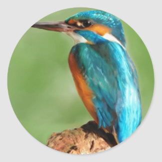 Kingfisher Round Sticker