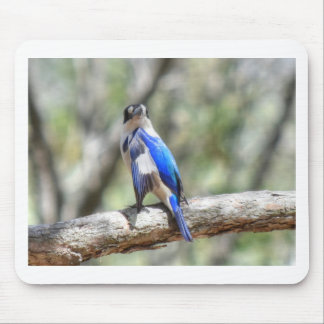 KINGFISHER RURAL QUEENSLAND AUSTRALIA MOUSE PAD