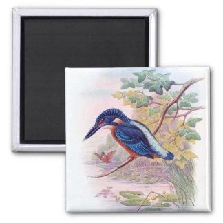 Kingfisher Square Magnet