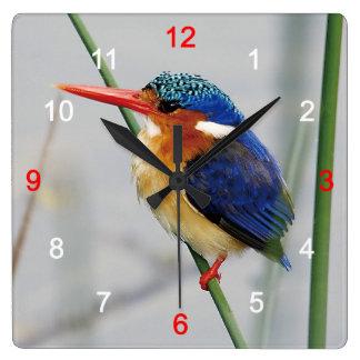 Kingfisher Wallclock