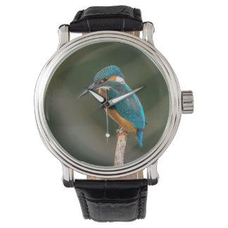 KIngfisher Watch