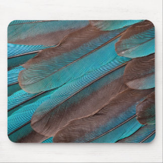 Kingfisher Wing Feathers Mouse Mat