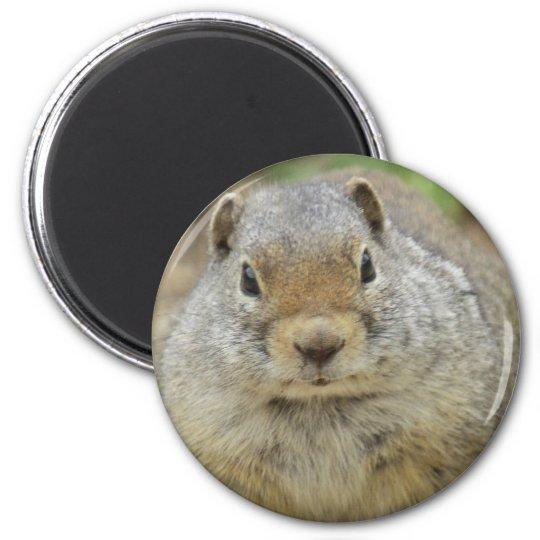 Kingpin 6 Cm Round Magnet