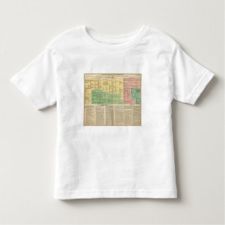 Kings of Ireland and Wales Toddler T-Shirt